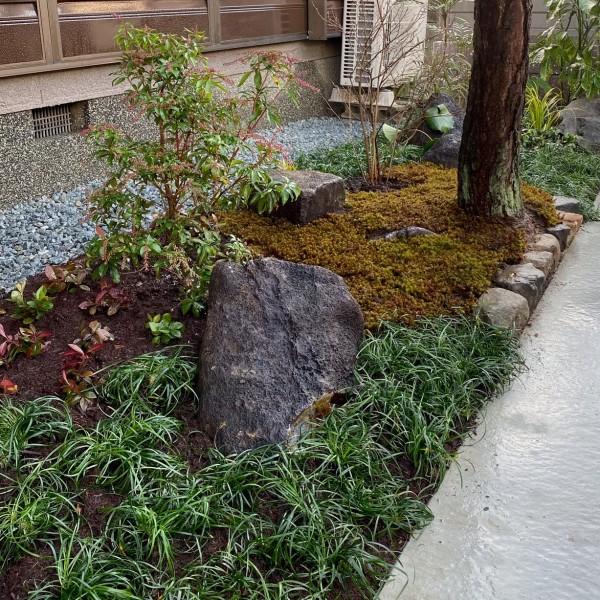 松の足元には植栽